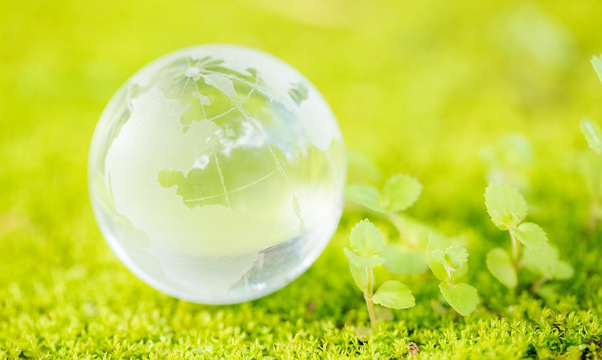 Zaštita okoline: Ovih 10 stvari čine svet boljim!