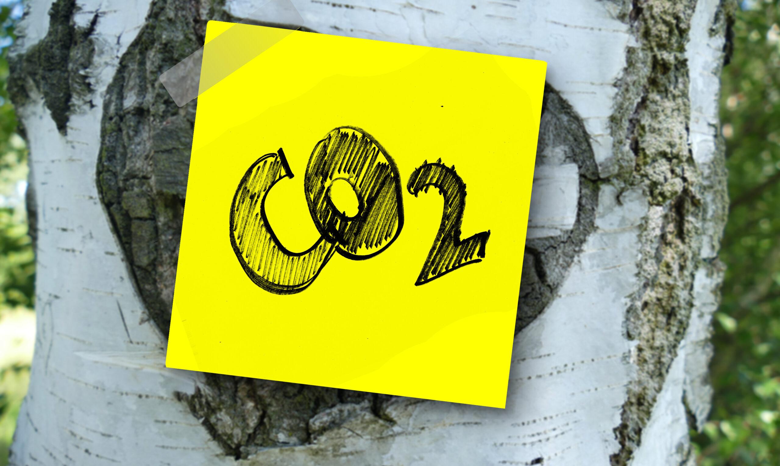Neočekivano buđenje planete: Najveće smanjenje emisije CO2 još od Drugog svetskog rata