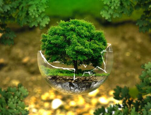Šta ti možeš da uradiš za zdraviju okolinu?